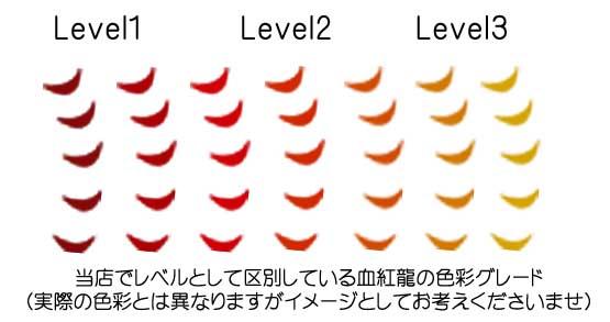 Level1〜3の色彩