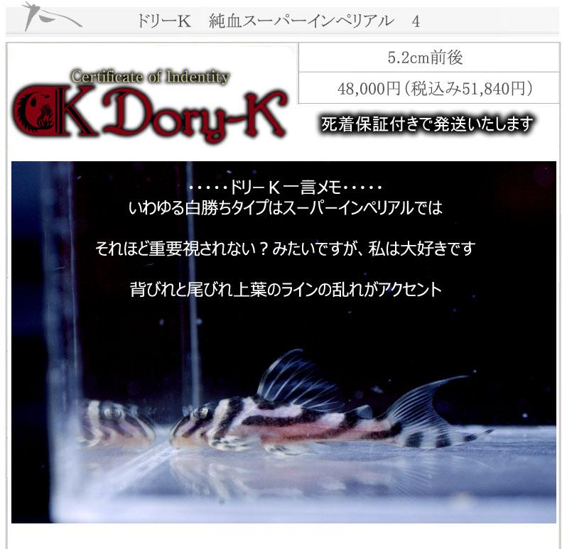 ドリーK純血インペリアル4