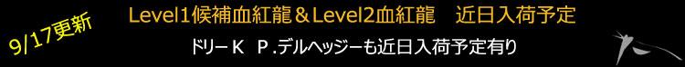 Level1候補&ドリーK